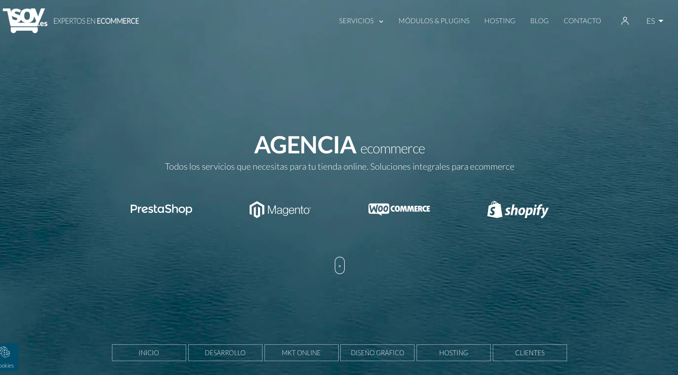 Agencia ecommerce España Soy