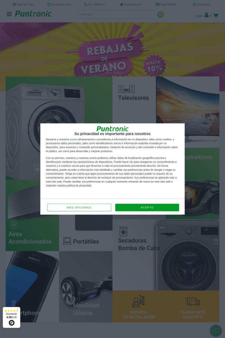 puntronic.com